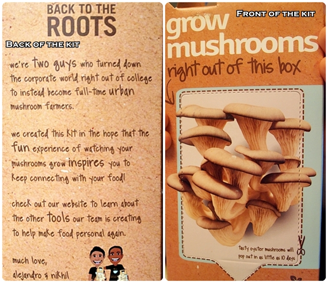 Mushroom Kit Front and Back